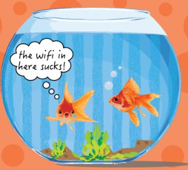 wifi goldfish