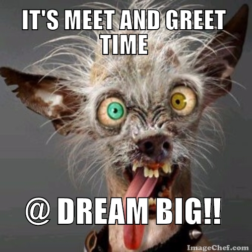 Meet and Greet Weekend @ DBDO: New Year's Day2016