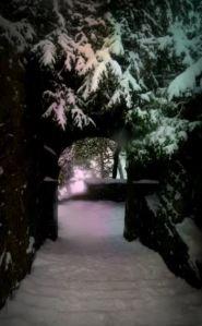 Snow Steps by Sue Vincent