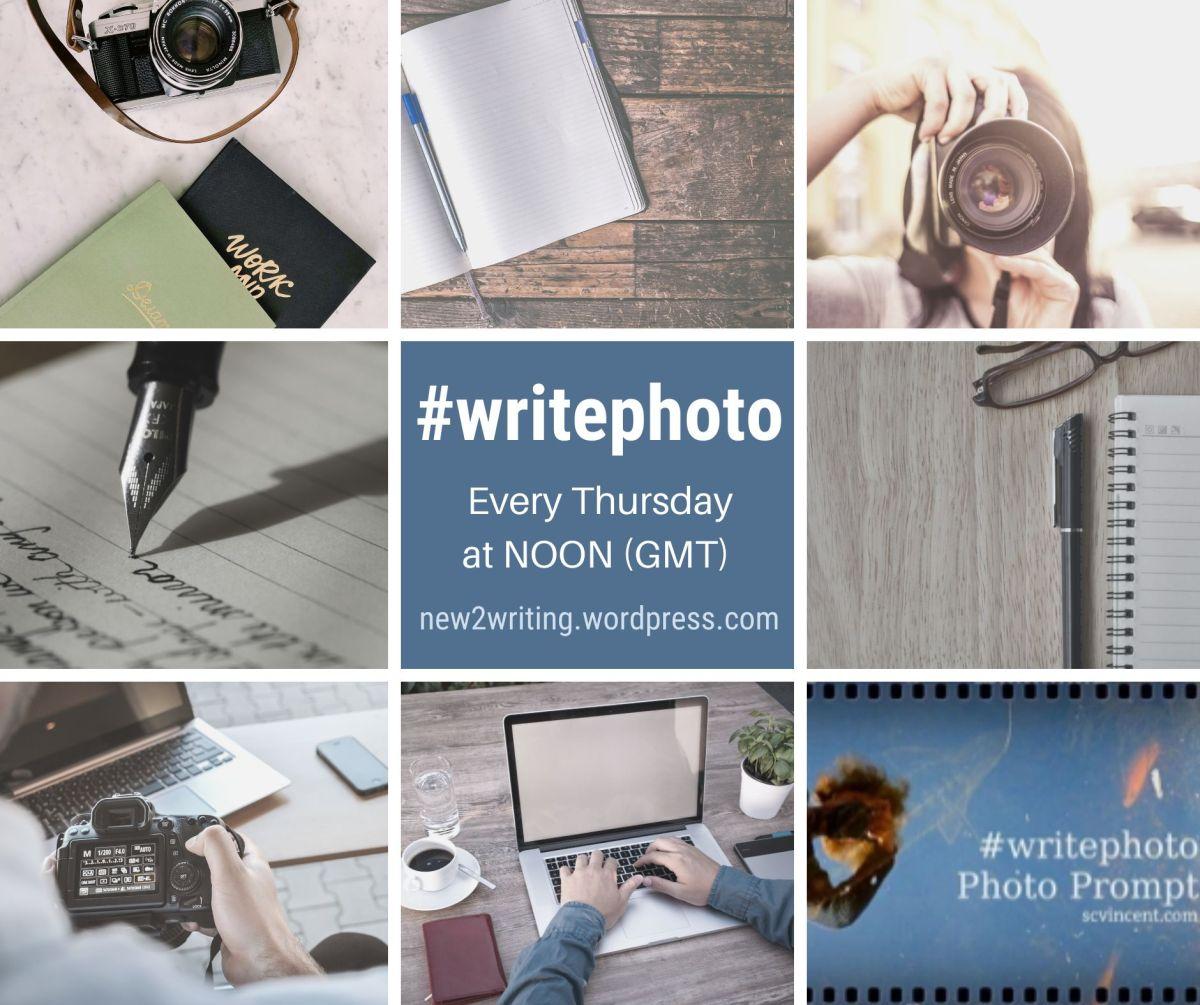 #WRITEPHOTO – DINOSAUR