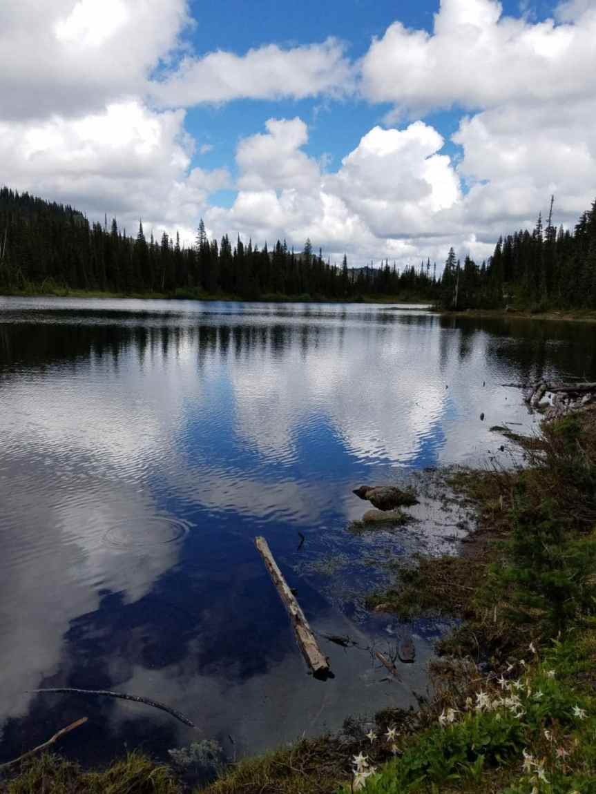 The Loneliness of a Wild Lake – A shortstory.