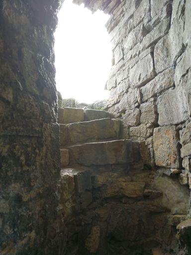 rough steps - stairway