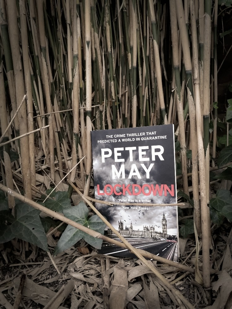 Cover - Lockdown by Peter May